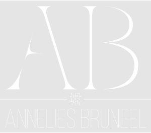 Bruneel-logo-gris